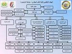 organizational-structurte